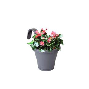 گلدان بانوشاک زیبا