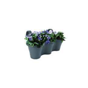 گلدان بانوشاک ۳ قلو زیبا
